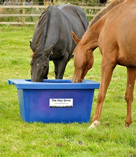 pages horse thenibblenet slow frame com htm feed nibblenet feeders hay website bag of official horses feeder sheet bags the for img